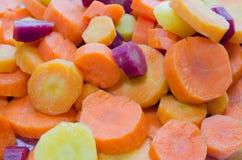 Tęcz marchewki Obrazy Stock