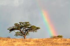 Tęcza krajobraz Zdjęcie Royalty Free