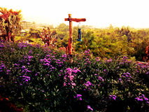 Tęcza ogród Fotografia Stock
