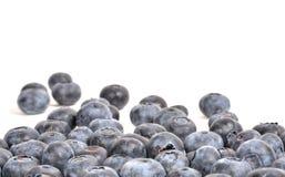 tła czarnej jagody karmowy zdrowy organicznie Fotografia Royalty Free