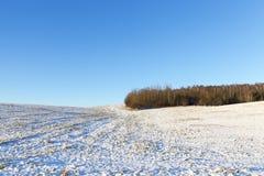 tła czeska wysoka krajobrazowa halna snezka zima Obraz Royalty Free