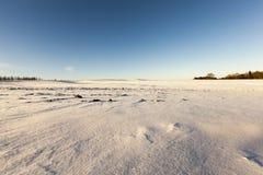 tła czeska wysoka krajobrazowa halna snezka zima Obrazy Royalty Free