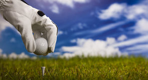 T de golfe Fotografia de Stock