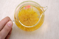 Té del crisantemo Fotos de archivo libres de regalías