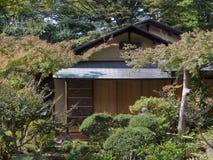 tè del giapponese della casa Fotografie Stock