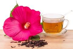 Té del hibisco y de la flor Fotografía de archivo