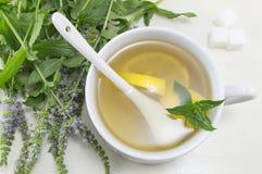Tè della menta con il limone e una pianta della menta fresca Fotografie Stock