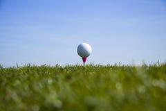 T della sfera di golf in su Fotografia Stock