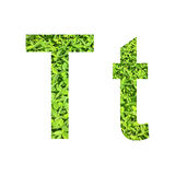 €œT do alfabeto inglês  do t†feito da grama verde no fundo branco para isolado Imagem de Stock
