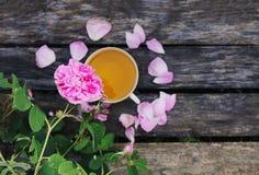 T? en estilo rural en jard?n del verano en el pueblo Taza de Vintafe de infusión de hierbas verde en los tableros de madera resis fotos de archivo
