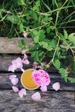 T? en estilo rural en jard?n del verano en el pueblo Taza de Vintafe de infusi?n de hierbas verde en los tableros de madera resis fotos de archivo libres de regalías