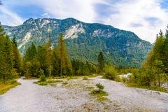 For?t en montagnes d'Alpes pr?s de Koenigssee, Konigsee, parc national de Berchtesgaden, Bavi?re, Allemagne images stock