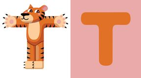 T est pour le tigre Lettre T Tigre, illustration mignonne blanc animal de vecteur de fonds d'image d'alphabet Photographie stock