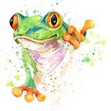滑稽的青蛙T恤杉图表 青蛙例证有飞溅水彩织地不很细背景 异常的例证水彩青蛙fa 免版税库存照片