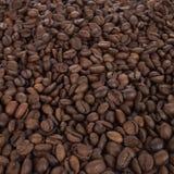 tła fasoli kawa Zdjęcia Royalty Free