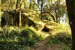For?t feuillue avec des formations de roche colossales et arbres en montagnes de Sintra photographie stock