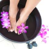 T in foot spa kom met orchideeën stock afbeelding