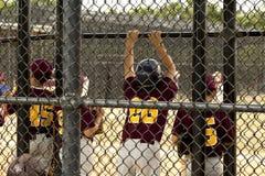 tła graczów baseballi sylwetki biel Obraz Stock