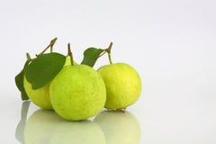 tła guava biel Zdjęcie Royalty Free