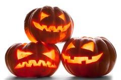 tła Halloween odosobniony dyniowy biel Obraz Royalty Free