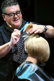 T.Hartley makes hairdressing for white hair model Royalty Free Stock Photography