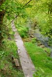 Tiny river in the Irish countryside surrounded by trees and vegetation. A t4iny river in the Irish countryside surrounded by trees and vegetation royalty free stock images