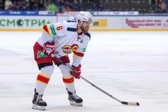 T Jaakola (6) Fotografia Stock
