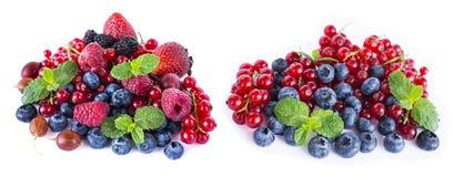 tła jagod owoc odizolowywali biel Dojrzali czerwoni rodzynki, malinki, czarne jagody, truskawki, gooseberrie, blackber Obrazy Royalty Free