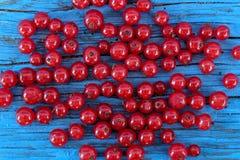 tła jagod porzeczkowe owoc odizolowywali biel Fotografia Stock