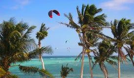 tła kani morza niebo Zdjęcia Royalty Free