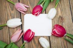 tła karcianego projekta kwiecista prezenta ilustracja twój Zdjęcie Royalty Free