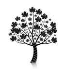 tła klonowego drzewa wektoru biel Zdjęcia Stock