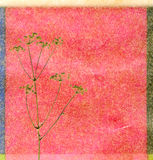 tła koloru koper Zdjęcia Royalty Free