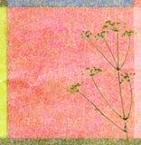 tła koloru koper Obraz Royalty Free