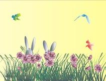 tła królika Easter wakacje Zdjęcia Royalty Free