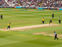 T20 krykieta dopasowanie Anglia Fotografia Royalty Free