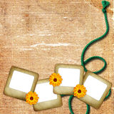 tła kwiatów fotografii arkany obruszenie Obrazy Royalty Free