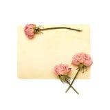 tła kwiatów papierowy rocznika biel Zdjęcie Stock