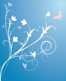 tła kwiatu wektor Fotografia Royalty Free