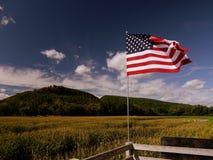 Été : labyrinthe de maïs avec le drapeau Photographie stock libre de droits