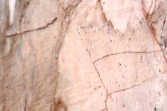 tła marmuru tekstury nagrobek Obrazy Royalty Free