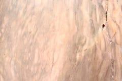 tła marmuru tekstury nagrobek Fotografia Stock