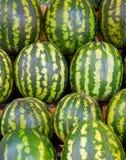 tła melonu woda Zdjęcie Stock