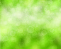 tła naturalny zielony Zdjęcie Royalty Free