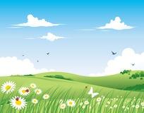 tła natury wiosna Obraz Royalty Free