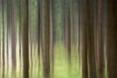 tło abstrakcjonistyczna natura Zdjęcie Royalty Free