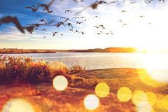 tło abstrakcjonistyczna natura Zmierzchu morze obrazy royalty free