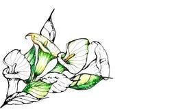tło abstrakcjonistyczny kwiat Obrazy Stock