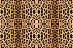 tło abstrakcyjna lamparta konsystencja skóry Obraz Royalty Free