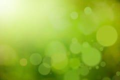 tło abstrakcyjna natura zielone Zdjęcia Stock